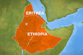 "Cohen's suggestion that Eritrea's engagement with Arab countries in the region is a step toward ""Sharia Law in the Horn of Africa"" respectfully borders on the ludicrous."